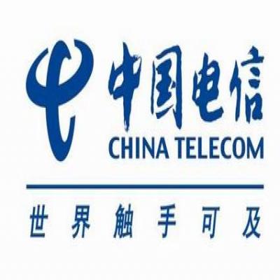 香港电信电池巡检项目